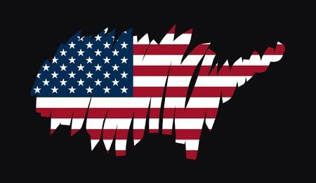 graphing: Mapa de la bandera de los Estados Unidos