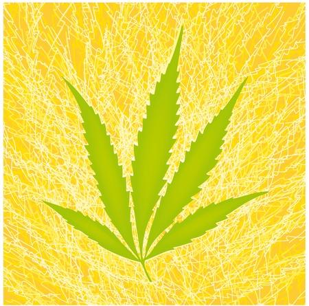 drug dealer: cannabis