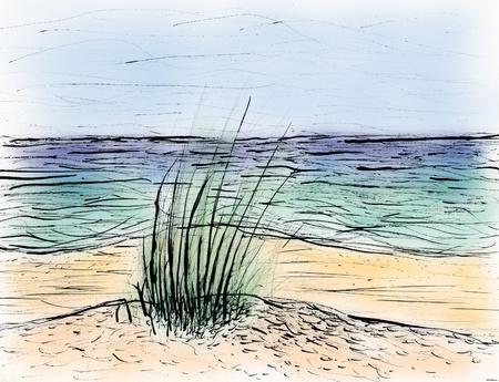 designed beach photo