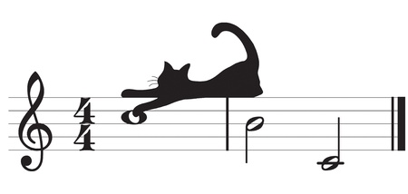 melodic: cats and music