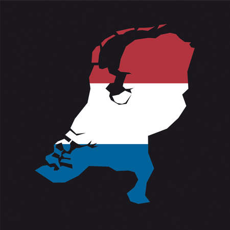 relief maps: flag map Netherlands