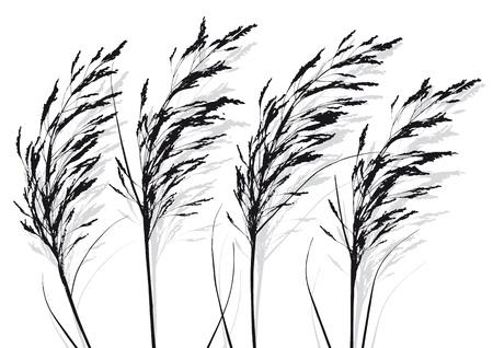planten Vector Illustratie