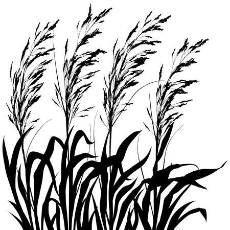plants Stock Vector - 10710476