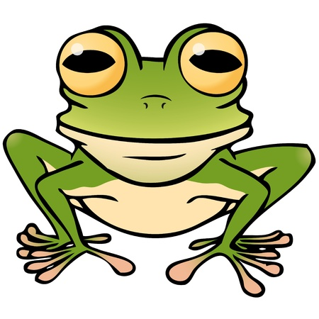 frog illustration: frog
