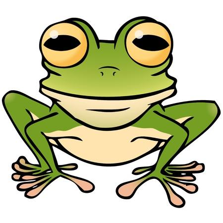 rana caricatura: rana Vectores