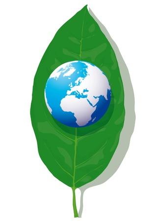 Globe on the leaf Stock Vector - 10737032