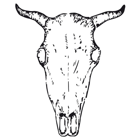 obsession: ox skull