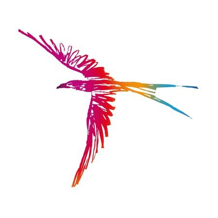 飛行中の鳥