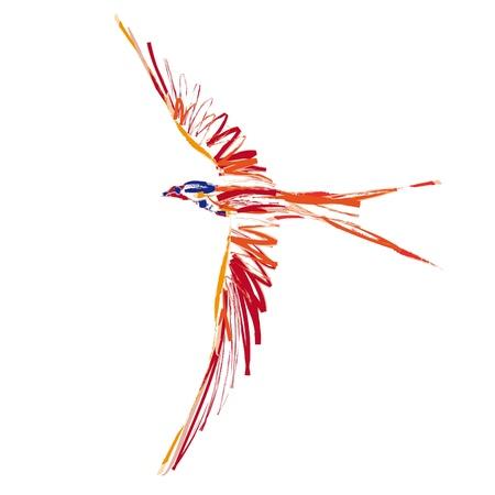 Uccello in volo Archivio Fotografico - 10737076