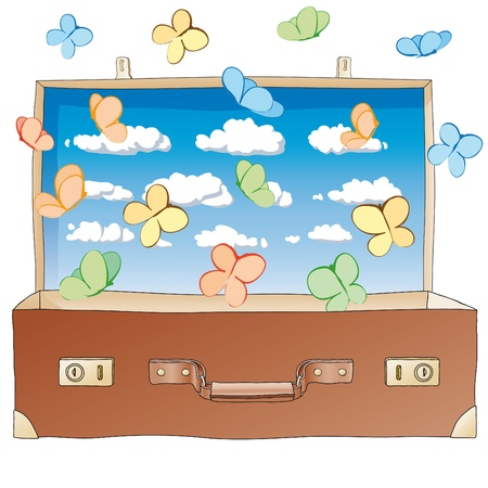 butterflies in suitcase