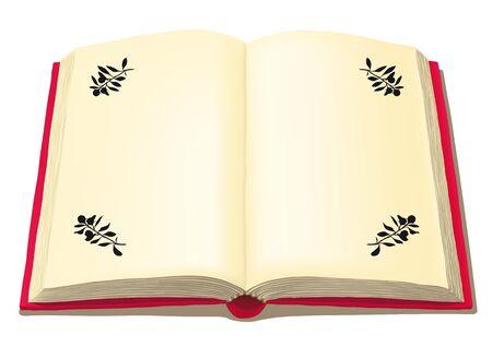 open book Banco de Imagens - 10816333