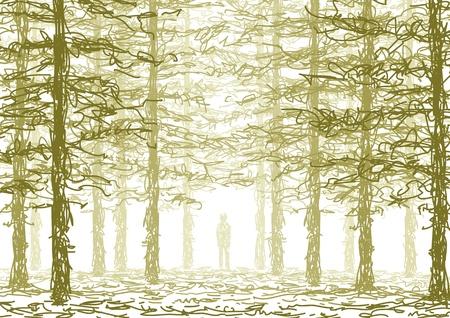 profundidad: en el bosque Vectores