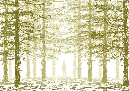 in the forest Vector