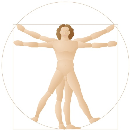 proportions of man: man