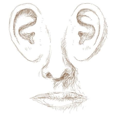 percepción: frente a las orejas