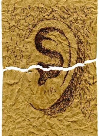 reverberation: ear Stock Photo