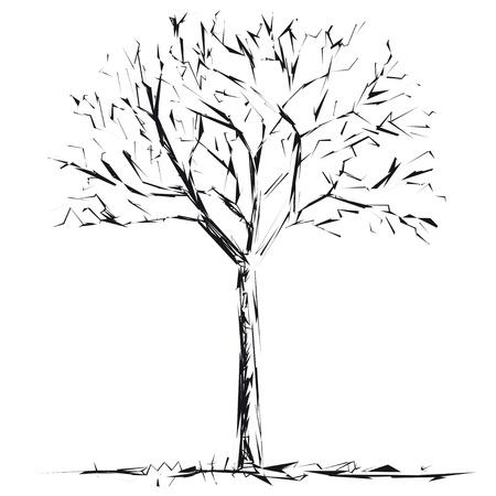 Bare tree Stock Vector - 12479852