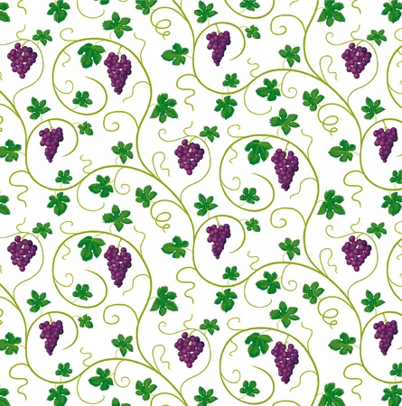 bunches of grapes Stock Vector - 15608525