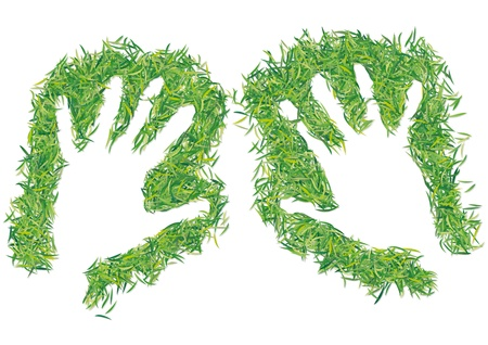 hands framed grass Illustration