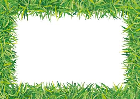 greening nature natural: frame grass