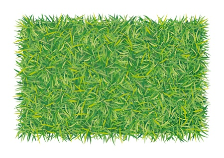 greening nature natural: rectangle of grass