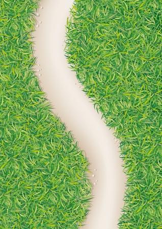 percorso nel verde