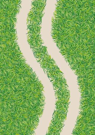 strada nel verde Vettoriali