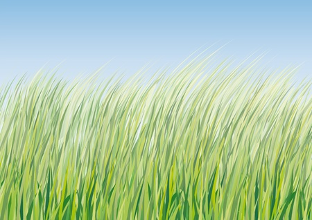 greening nature natural: background with grass