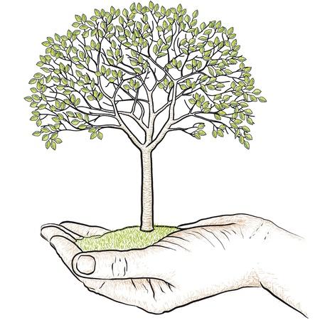 木を持っている手します。