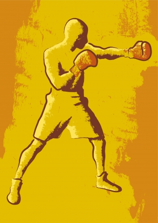 robust: boxer