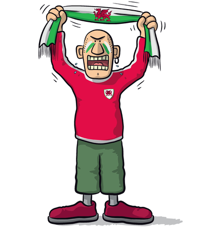 weep: Wales soccer supporter