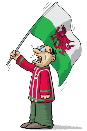 supporter: Wales soccer supporter