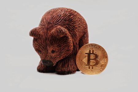 A handmade wooden Brown Bear standing next to gold Bitcoins with white background
