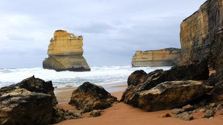 The coastline with the wild ocean of the Twelve Apostles or Port Campbell National  Park  is the highlight on the Great Ocean Road, Victoria, Australia photo