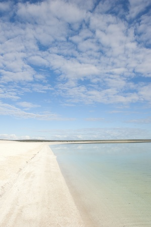 shark bay: Remote white shell beach and shallow water of Indian Ocean at Shark Bay, Western Australia, with clouscape, blue sky as background and copy space.