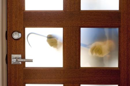 doorlock: Hands of Burglar, thief  with gloves, holding crowbar trying to break in home, unlock door, blurred visible silhouette behind milky windows, with copy space.