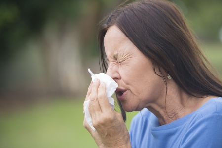 Portrait mature woman suffering from cold or flu infection, sneezing into tissue, painful seasonal hayfever, with blurred outdoor background and copy space.