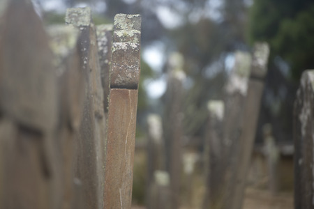 arthur: Historic Graveyard Isle of Deads at World Heritage Site Port Arthur Convict Settlement in Tasmania, Australia.