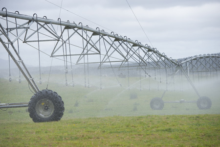 agricultural farm land: Irrigation by pivot sprinkler and spraying system on misty green grass field or meadow on rural agricultural farm land copy space. Stock Photo