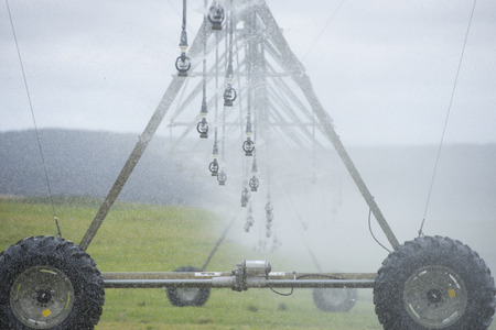 pivot: Misty Irrigation by pivot sprinkler and spraying system on lush green grass field or meadow on rural agricultural farm land, copy space.