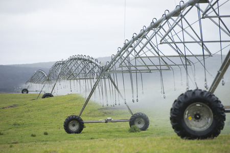 Irrigation by pivot sprinkler and spray system on green grass field or meadow on rural agricultural farm land, copy space.