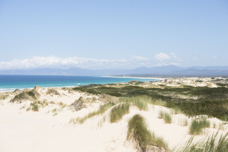 Scenic Coastline at Bay of Fires, Tasmania, Australia, at sunny summer day, with high sand dunes, turquoise ocean water, mountains as blurred background, copy space. photo