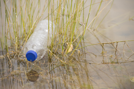 dumped: Empty plastic bottle illegal dumped and disposed, floating in water of river or lake between grass, polluting of wilderness environment, with outdoor blurred background and copy space. Stock Photo