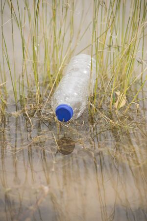 dumped: Empty plastic bottle illegal dumped and disposed, floating in water of river or lake between grass Stock Photo