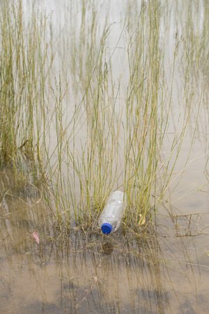 disposed: Empty plastic bottle illegal dumped and disposed, floating in water of river or lake between grass Stock Photo