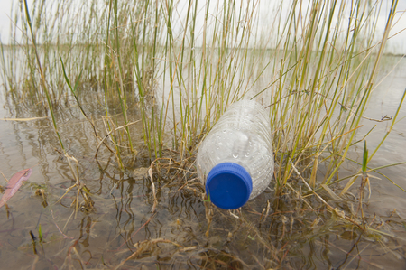 Empty plastic bottle illegal dumped and disposed, floating in water of river or lake between grass photo