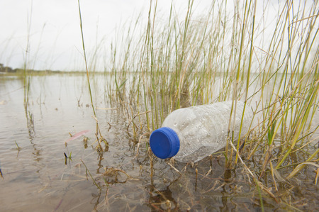 water contamination: Empty plastic bottle illegal disposed, floating in water of river or lake between grass Stock Photo