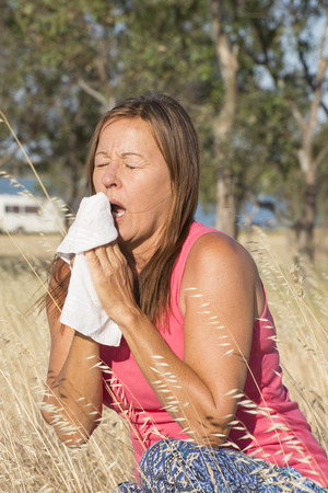 hayfever: Portrait attractive mature woman suffering from seasonal hayfever allergy, sitting in field of blossoming wheat grass sneezing stressed into handkerchief tissue Stock Photo