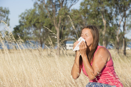 hayfever: Portrait attractive mature woman suffering from seasonal hayfever allergy, sitting in field of blossoming wheat grass sneezing into handkerchief tissue