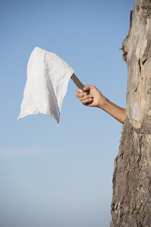resignation: Arm and hand of person hiding behind tree holding white flag, cloth or handkerchief as sign for peace, resignation and offering negotiations, with blue sky as outdoor background and copy space.
